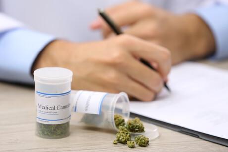 FreshLeaf reveals medicinal cannabis report